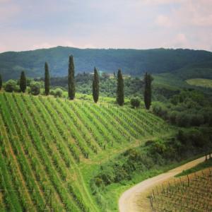 village Volpaia Chianti alidifirenze