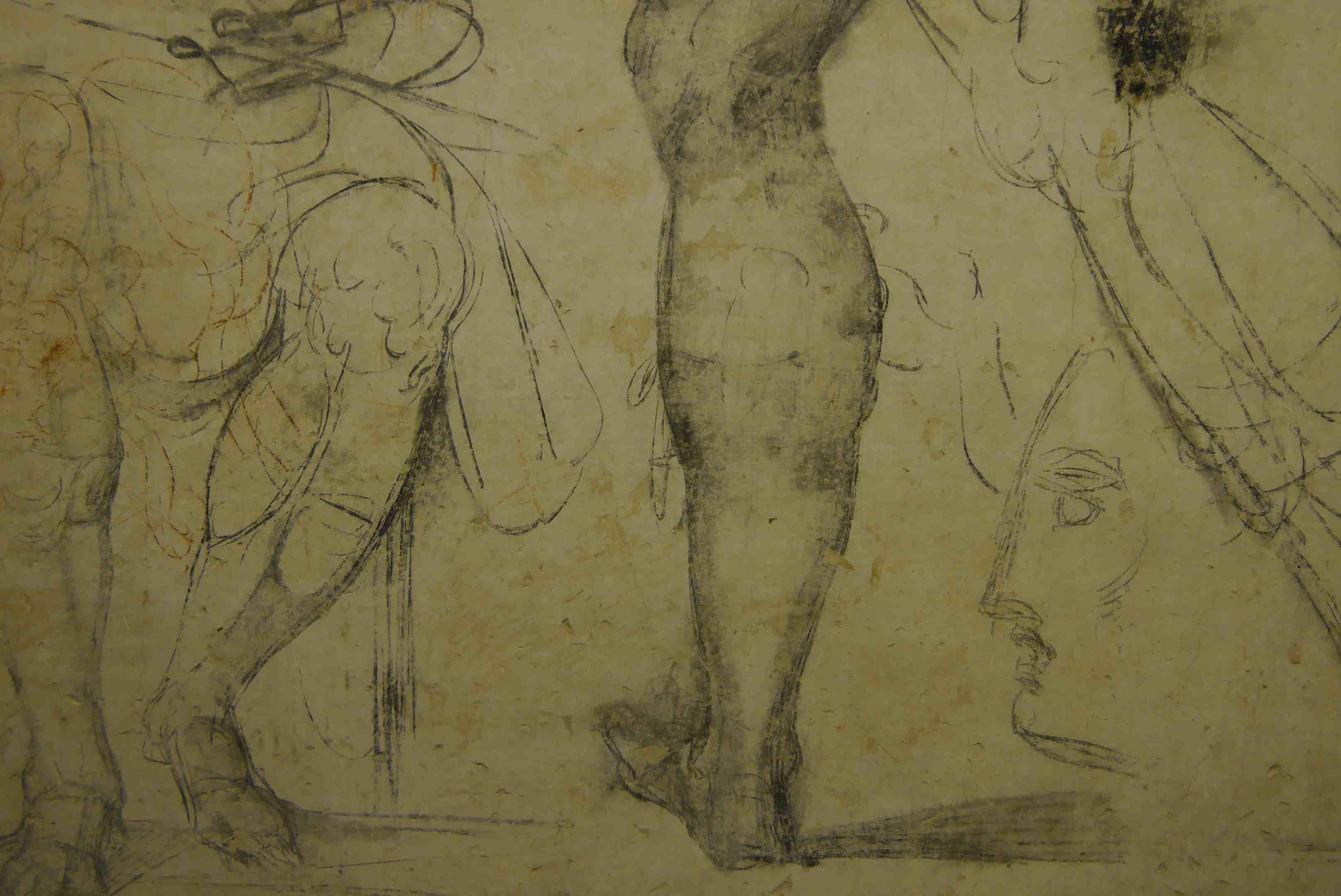 Chambre secrète Michelangelo Alidifirenze3