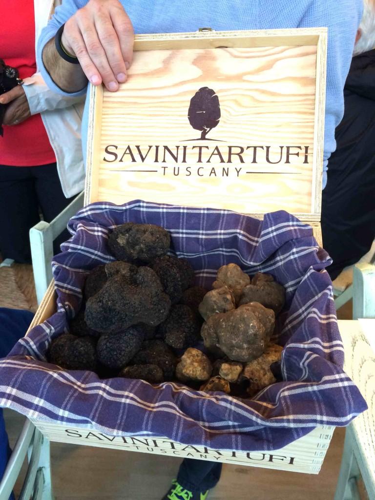 truffes savini alidifirenze