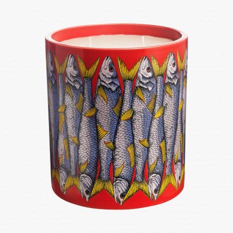 Fornasetti bougie sardine rosso Alidifirenze