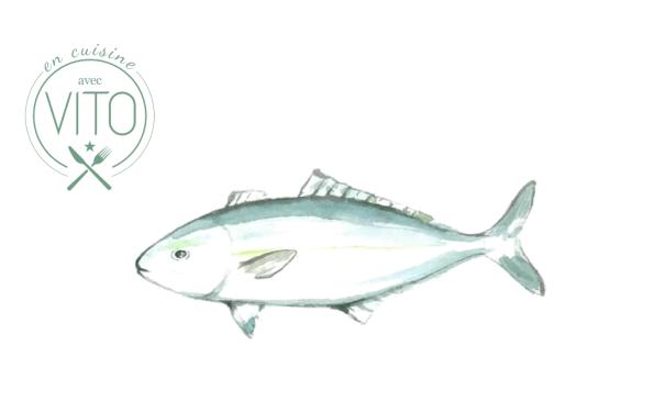 Cover Tartare de poisson Vito Mollica Alidifirenze