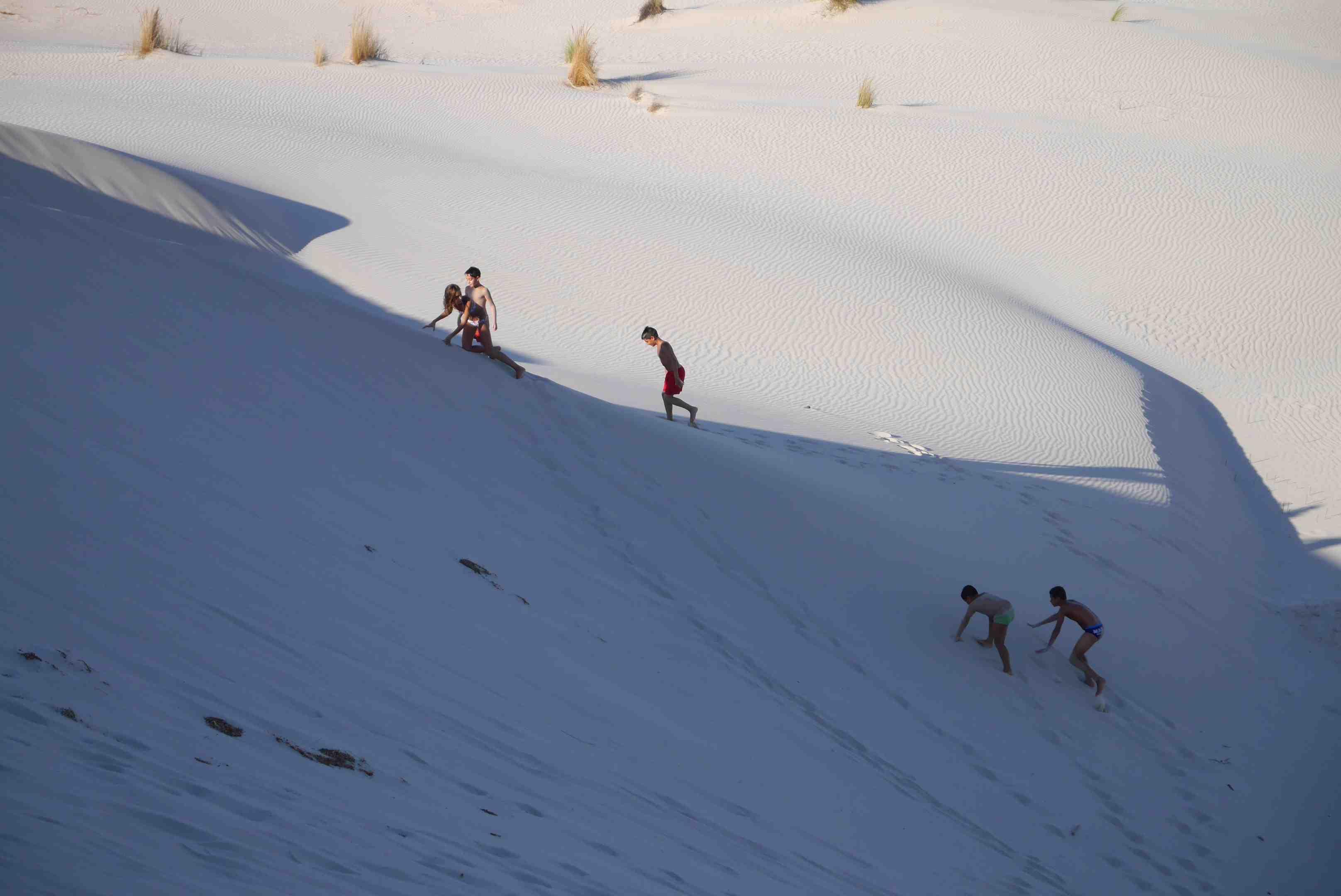 Sardaigne dunes alidifirenze 3