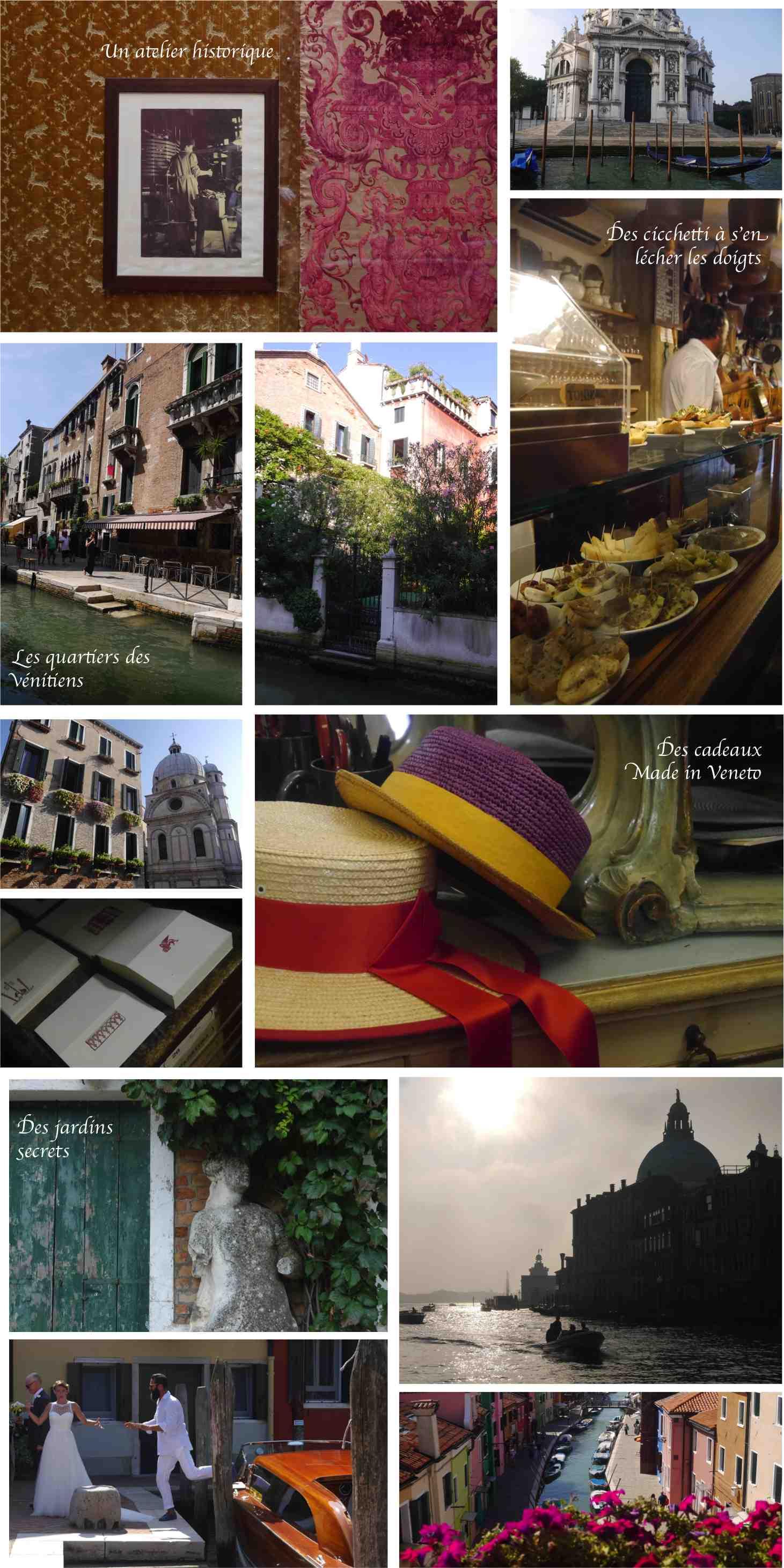 Venise ali di venezia