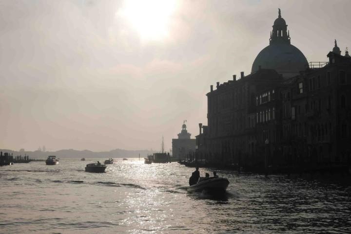 Venise Ali di Firenze4