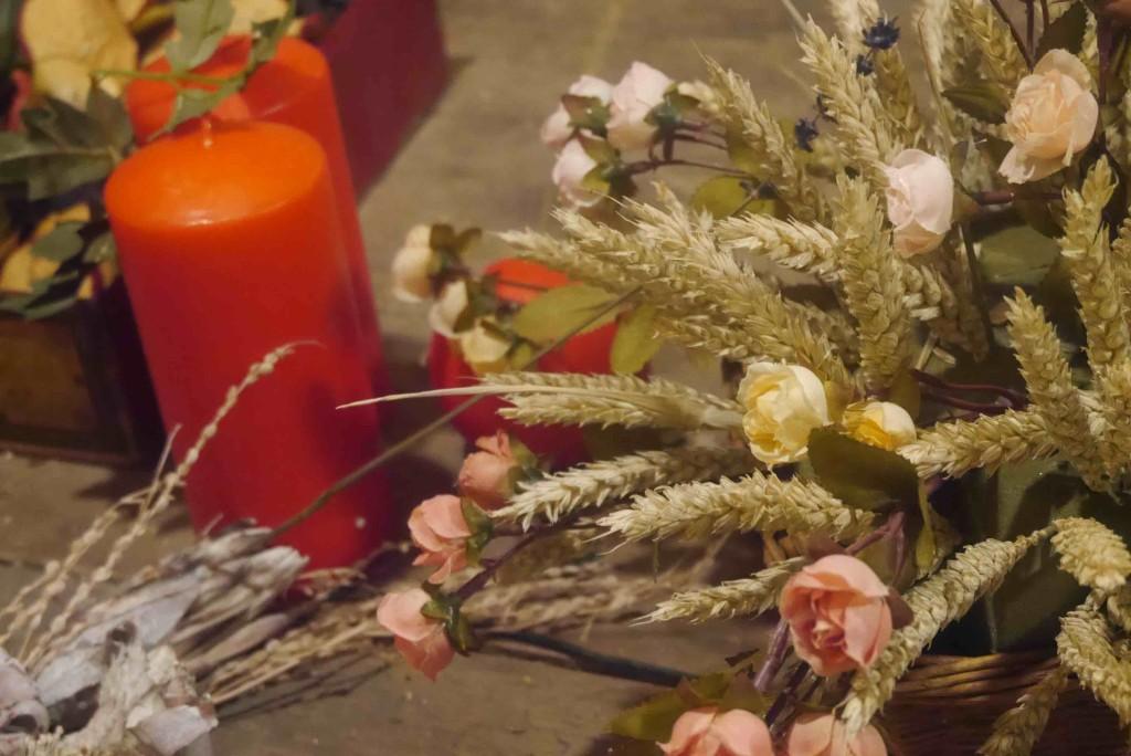 aqua flor ali di firenze 4