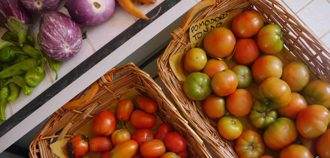 Passeggiata #23 Légumes à Castagneto Carducci