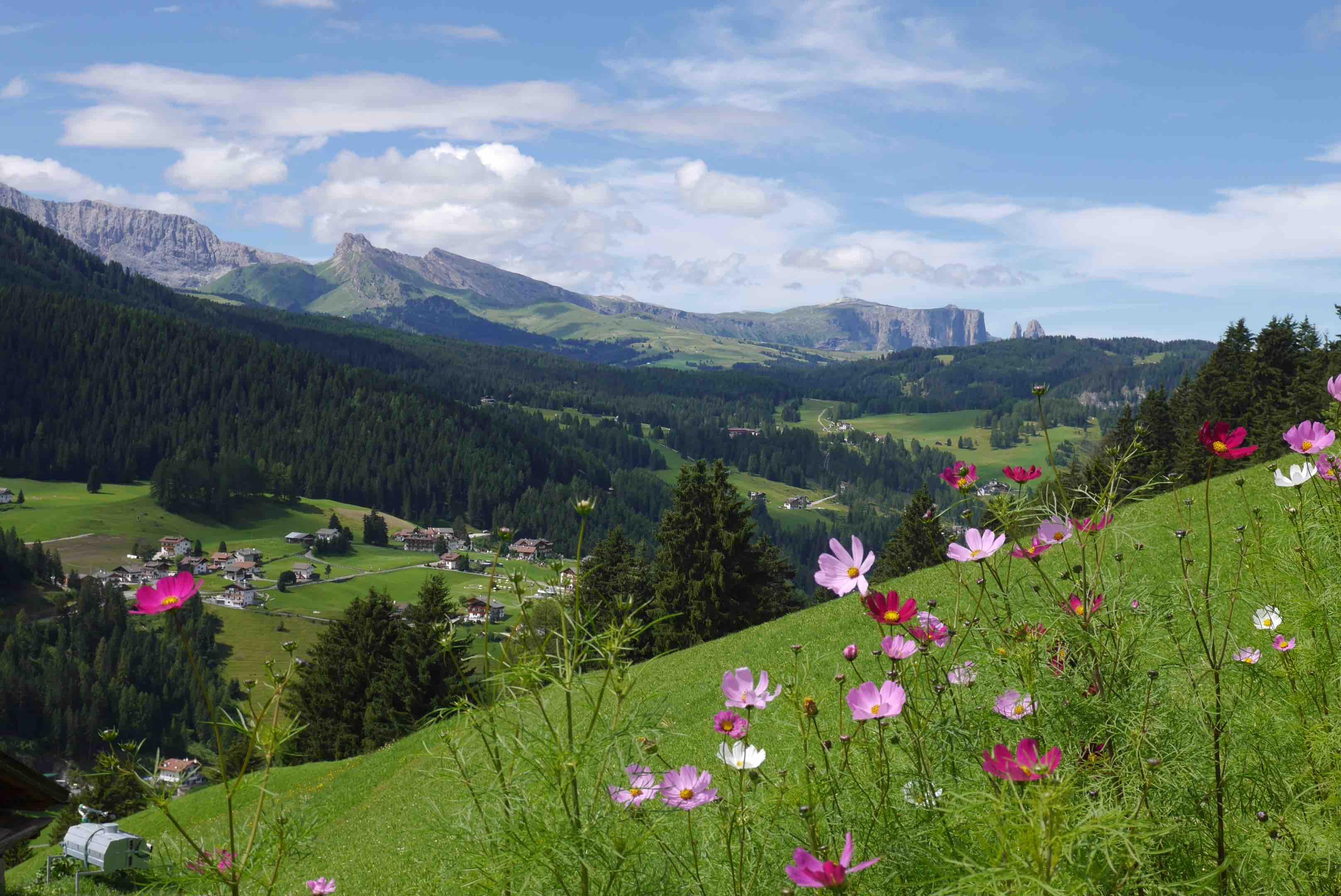 montagne-italie-ali-di-firenze-20