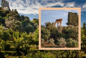 Merveilleux jardins siciliens / Kolymbetra dans la vallée des temples