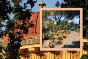 Merveilleux jardin Sicilien / L'Orto Botanico suranné de Palerme