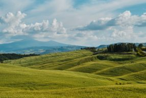 Val d'Orcia Postcard