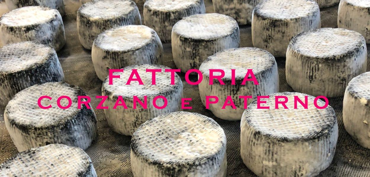 Italian Moment / Ferme agricole Corzano e Paterno