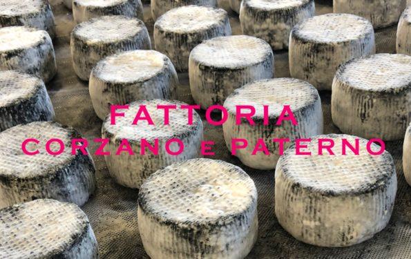 Fromages italiens de la ferme de Corzano