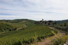 Découverte à pied du Chianti, de Panzano à Montefioralle