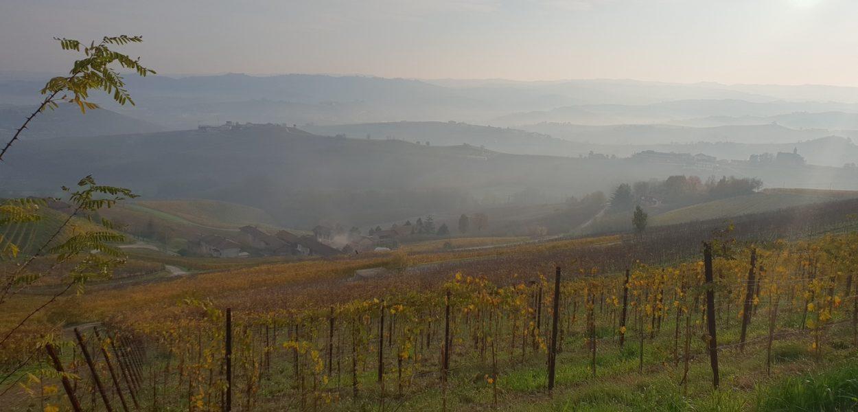 Paysage magnifique dans les langhe en italie
