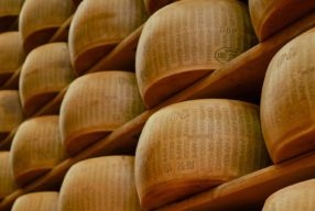Le Grand Food Tour, les secrets du parmigiano reggiano