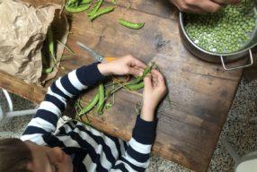 MIMOK #30 Risotto aux petits pois et à la pancetta