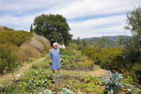 La diète italienne, chapitre 13 / Cristina di Carpegna, fondatrice de l'agritourisme biodynamique Le Tassinaie