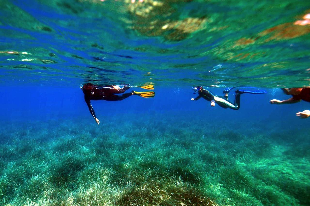 sardaigne snorkeling