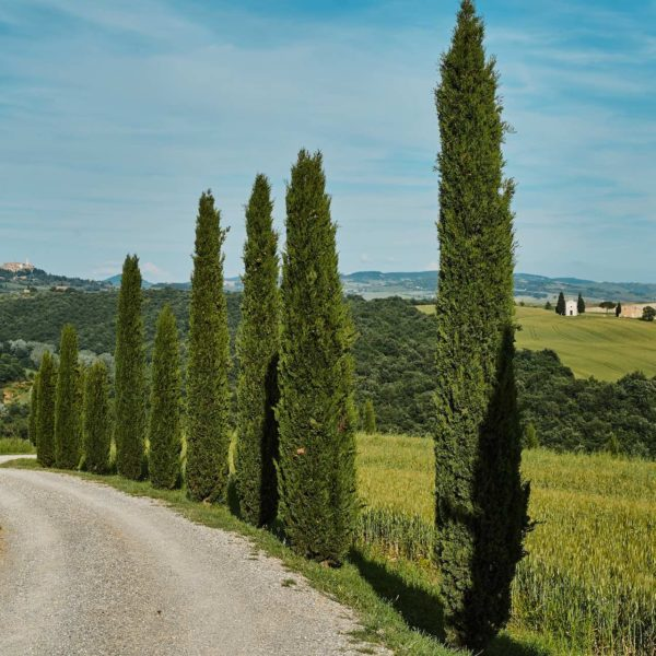 val orcia cypres chemin