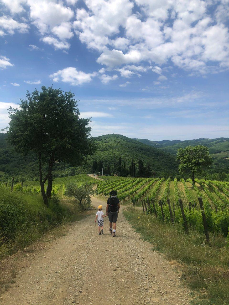 Trekking Chianti